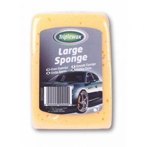 sponge-large